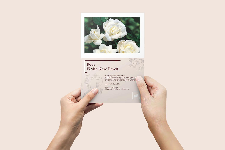 flora-2000-flyer